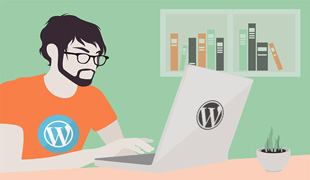 wordpress freelancer pune